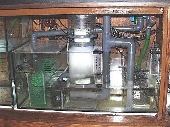 Acquario di barriera il filtraggio for Acquario per tartarughe con filtro
